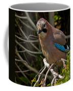 Jay Coffee Mug