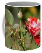 Jh Pierneef Rose Coffee Mug