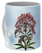 Joe-pye Weed Wildflower - Eupatorium Coffee Mug