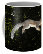 Jumping Gray Squirrel Coffee Mug by Ted Kinsman