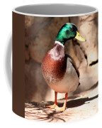 Just Ducky Coffee Mug