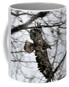 Juvenile Bold Eagle Coffee Mug
