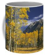 Kananaskis Fall Colors Coffee Mug