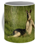 Kangaroo Playing It Cool Coffee Mug