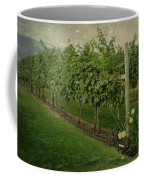 Kelowna Vineyard Coffee Mug