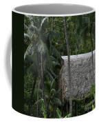 Kepaniwai Coffee Mug