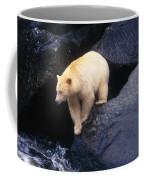 Kermode Bear On Boulder Hunting Salmon Coffee Mug