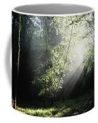 Killarney National Park, Co Kerry Coffee Mug