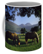 Killarney,co Kerry,irelandtwo Horses Coffee Mug