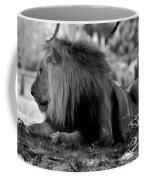 King Of Cats Coffee Mug