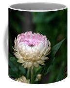 King Rose Strawflower Coffee Mug