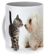 Kitten & Pup Confrontation Coffee Mug