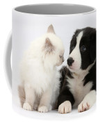 Kitten And Border Collie Pup Coffee Mug