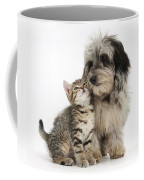 Kitten And Daxie-doodle Puppy Coffee Mug