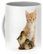Kitten And Ducklings Coffee Mug