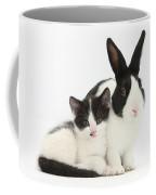 Kitten And Dutch Rabbit Coffee Mug