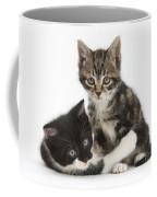 Kitten Pals Coffee Mug