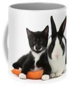 Kitten, Rabbit And Carrot Coffee Mug