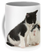 Kitten With Guinea Pig Coffee Mug
