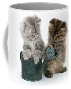 Kittens And Watering Can Coffee Mug