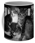 Kittens Corner Coffee Mug