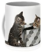 Kittens Playing With Box Coffee Mug