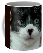 Kitty Closeup Coffee Mug