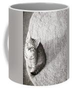 Kitty's Shadow Coffee Mug