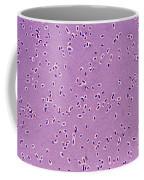 Klebsiella Pneumoniae Coffee Mug