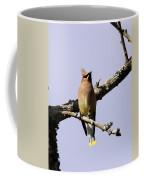 Knot Head Coffee Mug