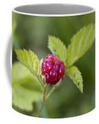 Knox Berry Farms Boysenberry Fruit Coffee Mug