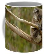Koala At Work Coffee Mug