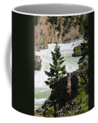 Kootenai Falls In Montana Coffee Mug