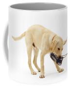 Labrador X Golden Retriever Puppy Coffee Mug by Jane Burton