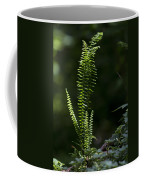 Lacy Wild Alabama Fern Coffee Mug