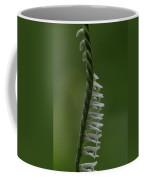 Ladies' Tresses Orchid Coffee Mug