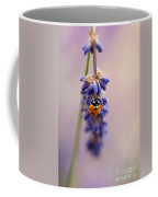 Ladybird And Lavender Coffee Mug