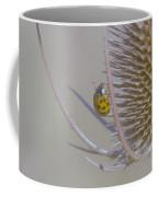 Ladybug Croosing The Prickles  Coffee Mug