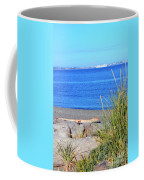Lagoon 2 Coffee Mug