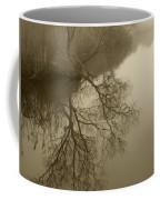 Lake Agawam Coffee Mug