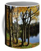 Lake And Trees, Mount Stewart, Co Down Coffee Mug