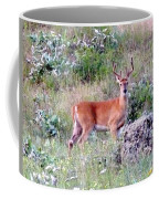 Lake Country Buck Coffee Mug