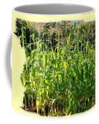 Lake Country Corn Coffee Mug