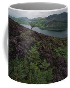 Lake District View From A Hillside Coffee Mug