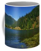 Lake Errock Coffee Mug