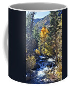 Lake Sabrina Creek Coffee Mug