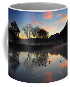 Lake With Trees And Ducks Coffee Mug