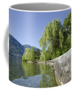 Lakefront With Trees Coffee Mug