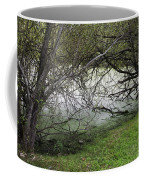 Lakeside View 1 Coffee Mug
