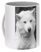 Lakota Coffee Mug